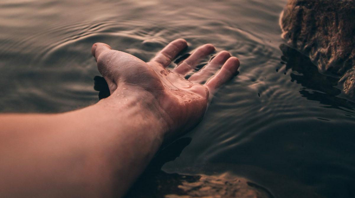 Elbow Wrist Hand