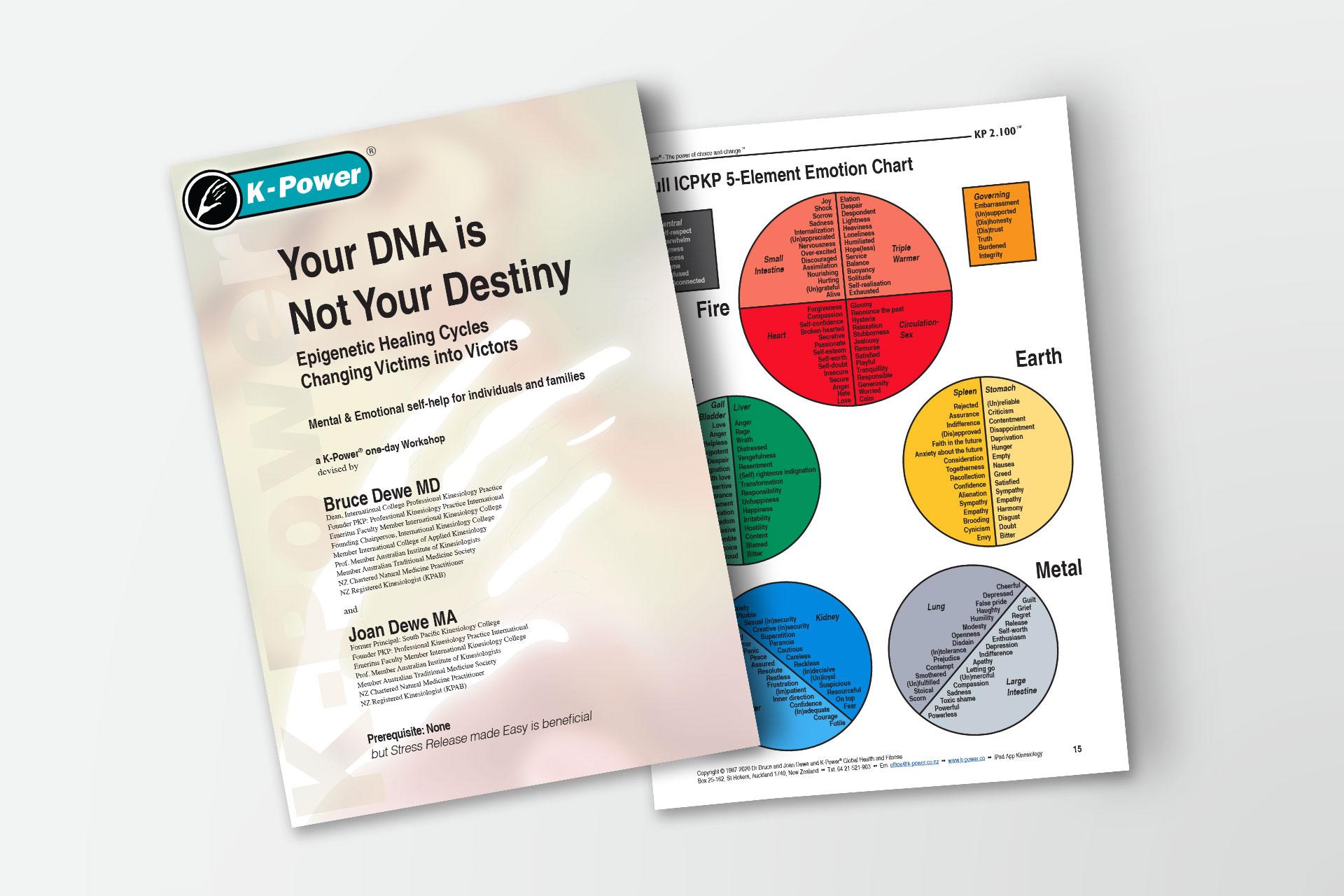 Dna destiny essays resume for shoppers drug mart